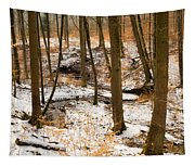 Trees In The Forest In Winter Brown And Orange Leaves Tapestry