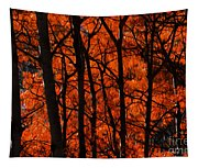 Trees Of Autumn Tapestry