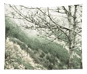 Trees On A Mountain Tapestry