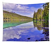 Trees Reflected At Valley Of The Five Lakes Tapestry