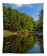 Trees Reflected On Mirrored Lake  Tapestry