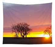 Trees Watching The Sunrise Panorama View Tapestry