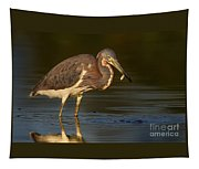 Tricolor Heron With Small Fish Tapestry