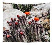 Trichocereus Cactus Flowers Tapestry