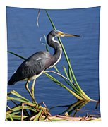 Tricolored Heron At The Pond Tapestry