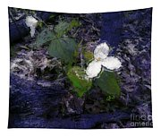 Trilliums Tapestry