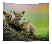 Trio Of Fox Kits Tapestry