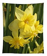 Tripartite Daffodil Tapestry