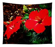 Tropical Hibiscus - Starry Wind 01a Tapestry