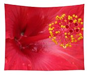 Tropical Hibiscus - Trinidad Wind 02 Tapestry