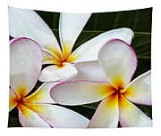 Tropical Maui Plumeria Tapestry