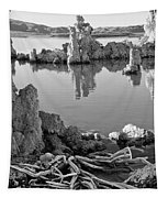 Tufa In Black And White Tapestry