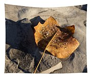 Tulip Tree Leaf - Frozen Raindrops In The Sunshine Tapestry
