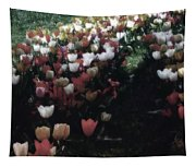 Tulipans Tapestry