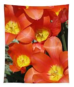 Tulips - Field With Love 25 Tapestry