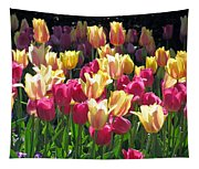 Tulips - Field With Love 35 Tapestry