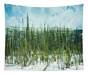 Tundra Forest Tapestry