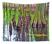 Tupelo/cypress Swamp Reflection At Mile 122 Of Natchez Trace Parkway-mississippi Tapestry