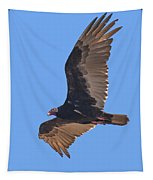 Turkey Vulture Soaring Overhead Drb153 Tapestry