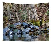 Turtle Landing Tapestry