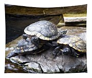 Turtle Rant Tapestry