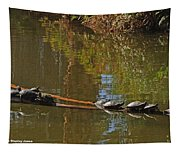 Turtles On A Log Tapestry