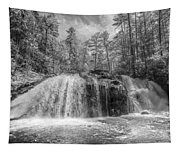 Turtletown Creek In Black And White Tapestry