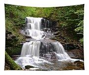 Tuscarora Falls Tapestry