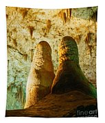 Twin Domes Tapestry