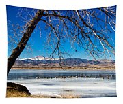 Twin Peaks Blue Tapestry