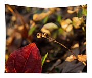 Twin Spotted Wintergreen Pods Tapestry