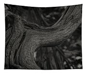 Twisted Tree Tapestry