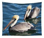 Two Beautiful Pelicans Tapestry