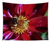 Two Different Bees Sharing  Tapestry