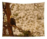 Two Eagles Hanging Out In Their Nest Tapestry