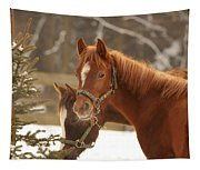 Two Horses In Winter Day Tapestry