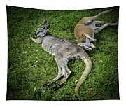 Two Lazy Kangaroos Lying Down Tapestry