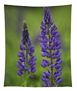 Two Lupine Tapestry