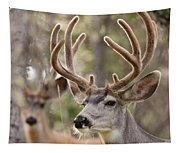 Two Mule Deer Bucks With Velvet Antlers  Tapestry