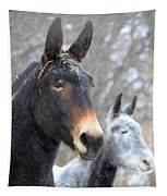 Two Mules For Sister Sara Tapestry