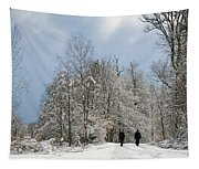 Two People Doing A Walk In Beautiful Forest In Winter Tapestry