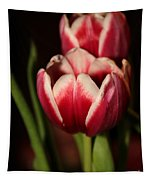 Two Red Tulips Tapestry
