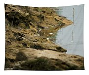 Two Spotted Sandpipers On The Flint Rivers Banks Tapestry