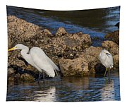 Two White Herons And A Coot Tapestry