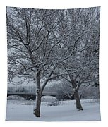 Two Winter Trees Tapestry