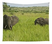 Ugandan Elephants Tapestry