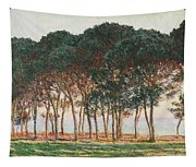 Under The Pines. Evening Tapestry