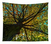 Under The Tree S Skirt Tapestry