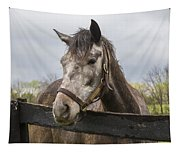 Unrivaled Honor Tapestry