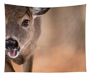 Up Close White Tail Tapestry